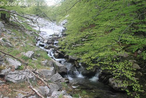 Cascada #DePaseoConLarri #Photography 29