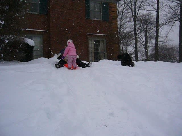 Bury face in snow