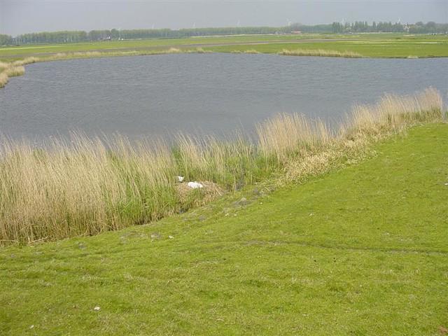 Hoorn          07-05-2006 30Km  (31)
