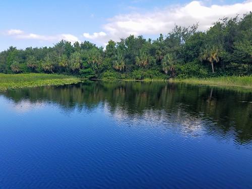 park florida boardwalk marsh naturepreserve wetland boyntonbeach greencaywetlands
