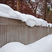 snow surf on fence