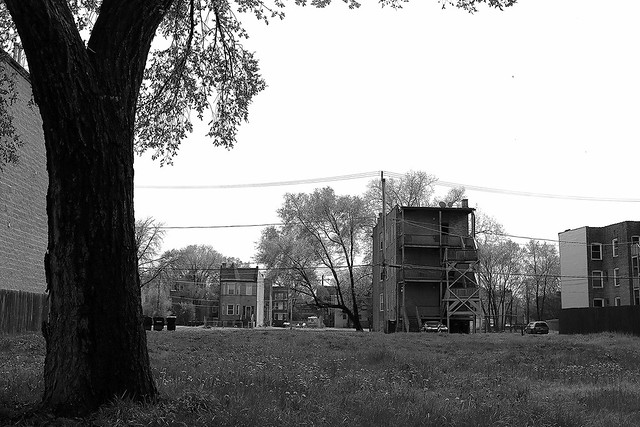The Landscape of Woodlawn - South Side of Chicago - 9 May 2014 - 6D - 005