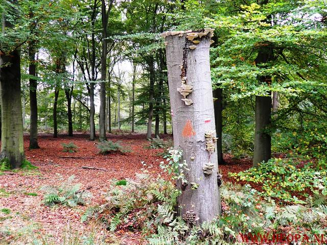 20-10-2012     Wedeblick-   Driebergen        25 Km (140)