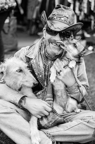 One man and his dogs | by RobertMPoole