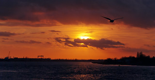 Sunset in Antwerp