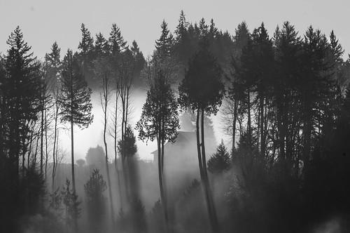 blackandwhite house fog landscape washington unitedstates vistasea