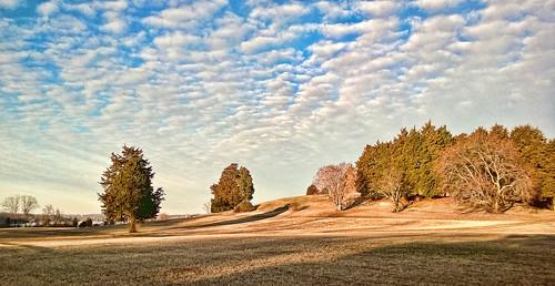 trees nature shadows land annapolis winterlandscape openspaces cloudssky