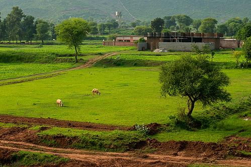 pakistan 30 project week abdul 52 islamabad qadir memon week30 3052 2013 project52 302013 522013 kuriroad bahriaenclave