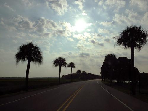 sun sc clouds sunrise southcarolina palmtree parrisisland