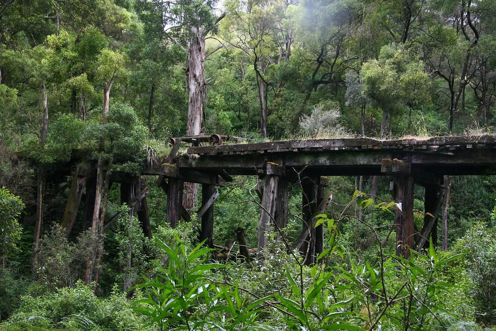 Timboon Rail Trail by Cris Fitzhardinge Aka CrisFitz