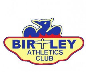 birtley-logo-2-300x251