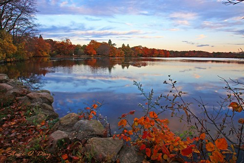 autumn lake newyork fall water clouds reflections longisland babylonny belmontlakestatepark