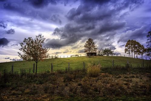 ranch horse nature landscape virginia day cloudy pasture va grazing mcdowell goldenlight
