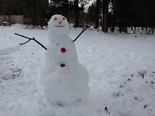 snow yard snowman branches newhampshire apples carrots penacook