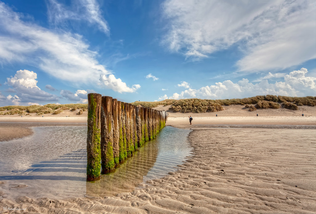 Tide Comes Roaring - Sand Dune Bluff Beach - Montana de