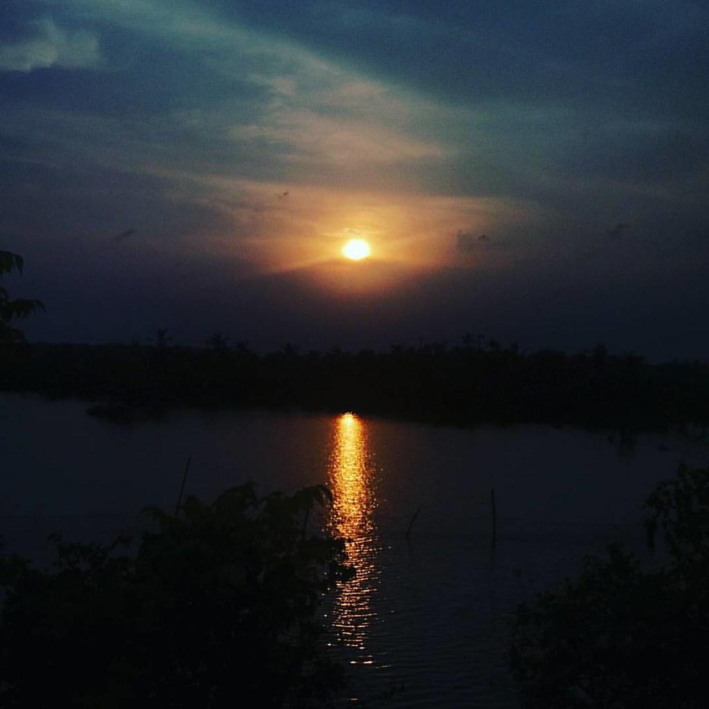 Ashtamudi Lake: Sunset View At Lake Shore