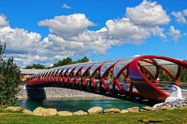 Peace Bridge Calgary (2)