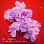 Z00140-紫 (1)