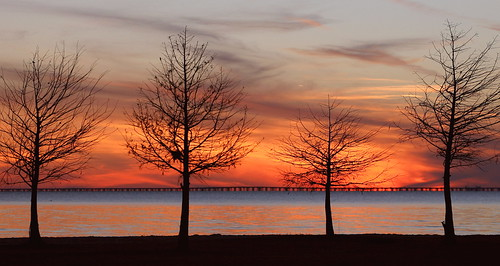 statepark trees winter sunset lana nature water silhouette catchycolors louisiana mandeville gramlich canoneos5d sttammanyparish fontainebleaustatepark bestcapturesaoi elitegalleryaoi lanagramlich dec242013