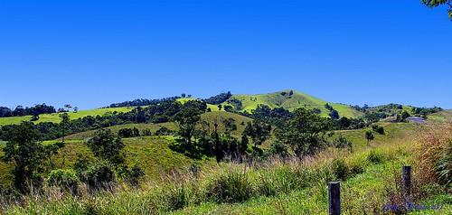 mountain landscape rainforest scenery australia queensland tablelands atherton northqueensland