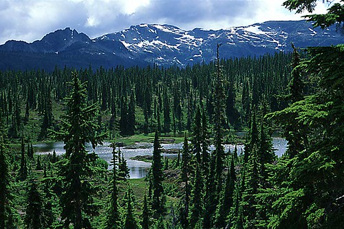 Alpine Lake, Strathcona Provincial Park, Central Vancouver Island, British Columbia, Canada