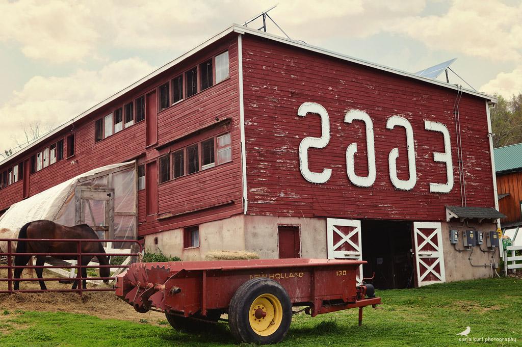19/52 - #LocalLandmark - Flamig Farm