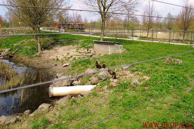 Natuurlijk Flevoland  12-04-2008  40Km (61)