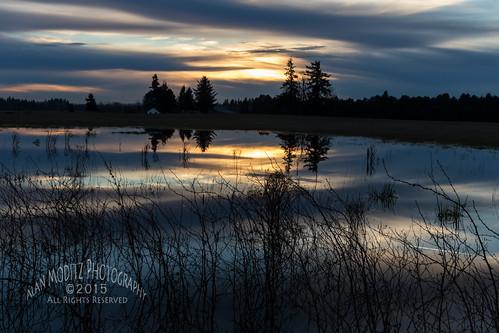 sunset sky cloud colour reflection water puddle washington pond unitedstates ridgefield 2015
