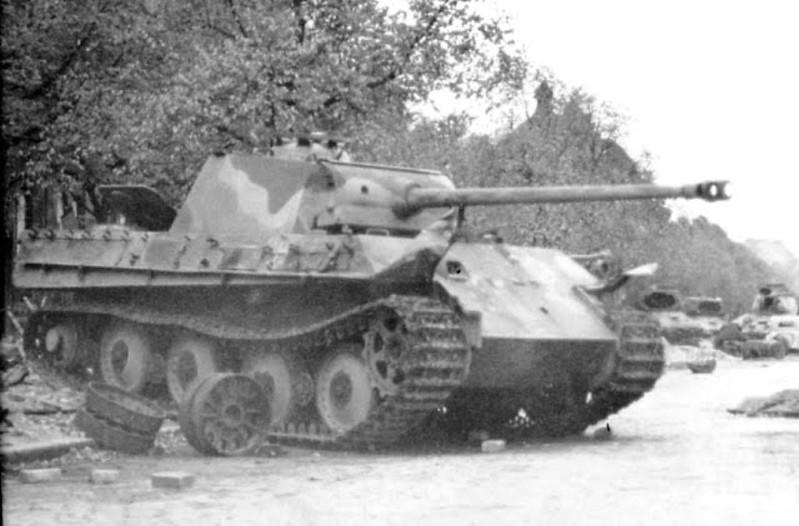 黑豹(1)