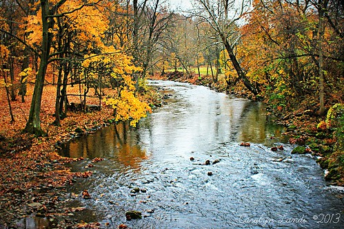 autumn trees usa fall nature water leaves creek forest reflections river landscape woods rocks colorful stream natural pennsylvania stones scenic rapids pa picturesque easton bushkill bushkillcreek carolynlandi