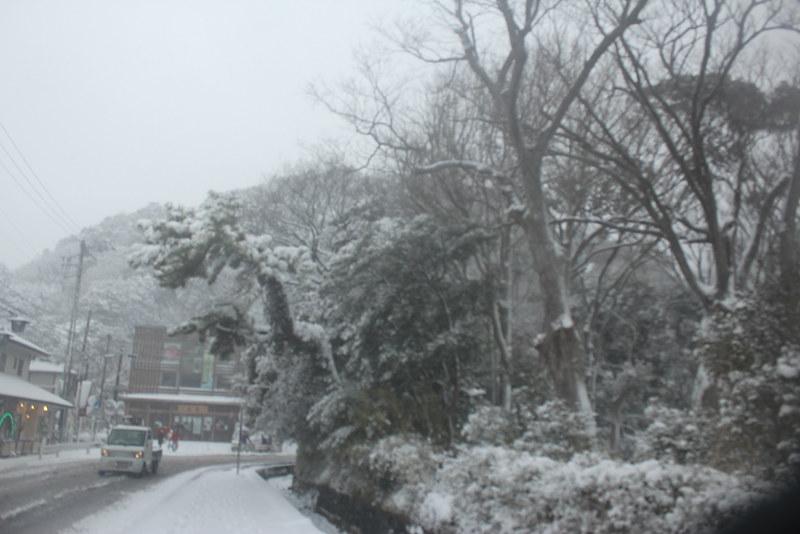 雪の鎌倉_11