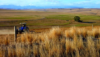 Ploughing The Fields of Fall - Western Cape - South Africa | by atlanticstorm (Christopher_Griner)