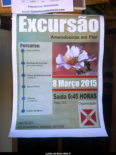 CARTAZ-CCML EXCURSÃO | by ALBERTINO SILVA