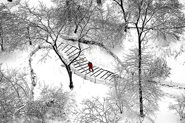 Man in Red walking with dog in the snow