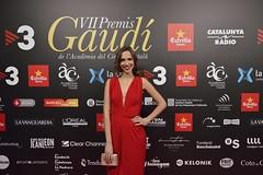 Catifa vermella VII Premis Gaudí (78)