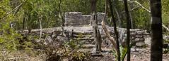 Xaman-ha Mayan Ruins