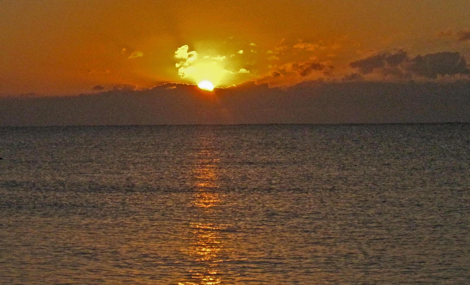Puerto Morelos 136