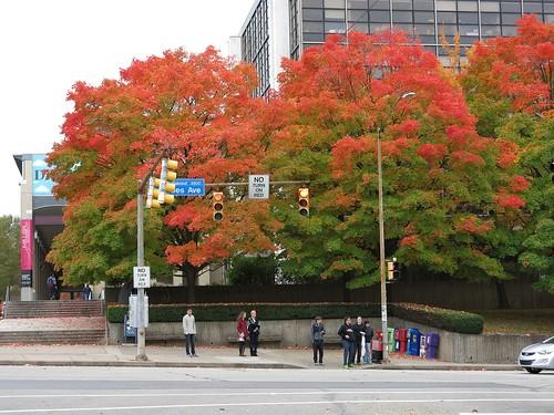 Fall at CMU