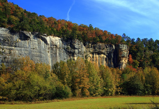 Autumn Color Atop Downstream End of Roark Bluff along Buffalo River - Steel Creek Campground, Northwest Arkansas