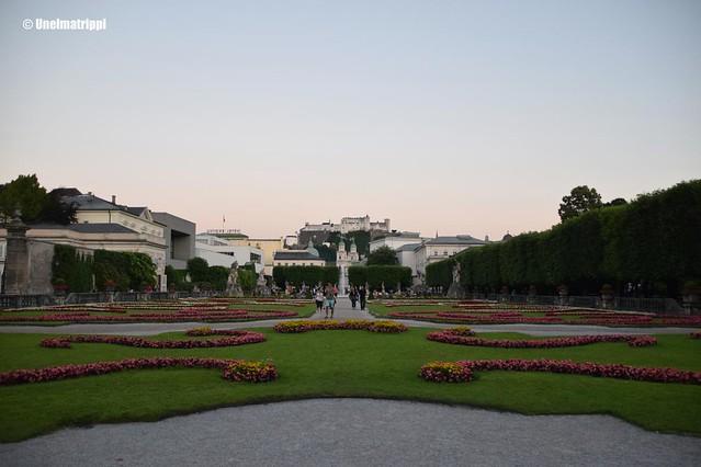 Mirabellin puutarha iltahämärässä