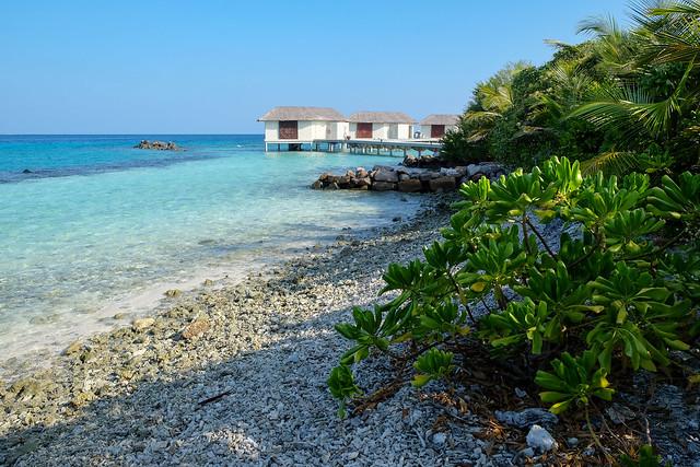 Maldives-120