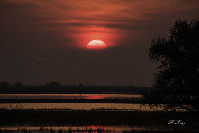 DSC_9103  _ Sunset