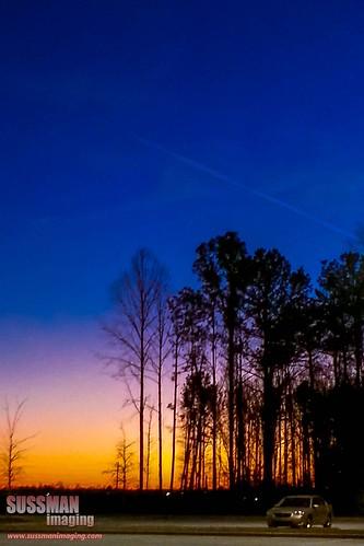 trees sunset sky nature car silhouette georgia twilight jefferson jacksoncounty thesussman sussmanimaging samsunggalaxynoteii
