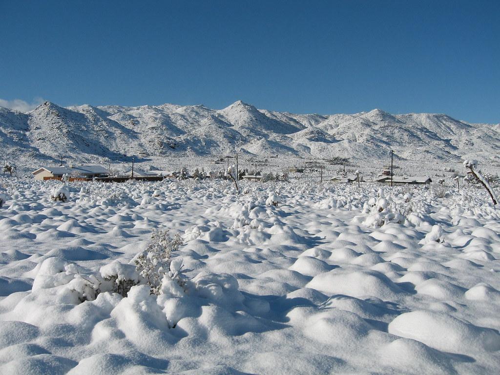 Snow At Joshua Tree Nps Robb Hannawacker Joshua Tree