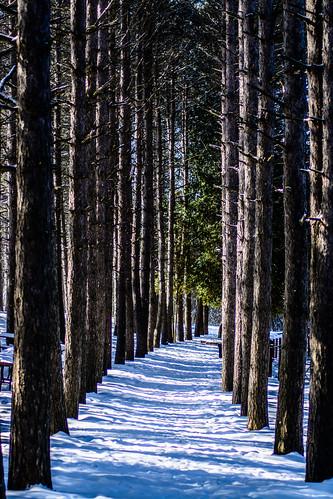 2014 february nature park retzernaturecenter waukesha waukeshacounty wisconsin winter unitedstates