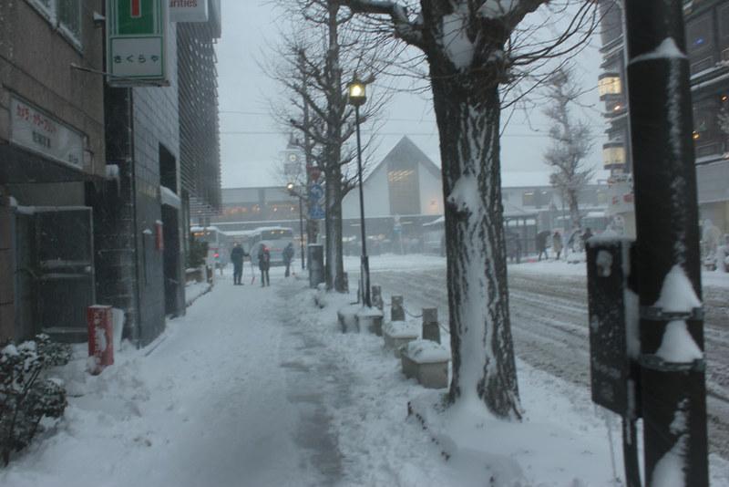 雪の鎌倉_56