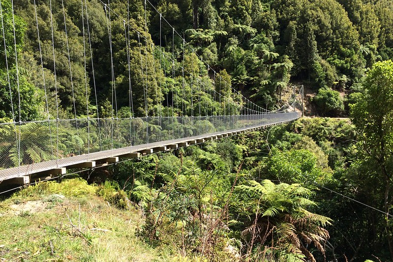 Timber Trail Cycleway, Pureora Forest, New Zealand