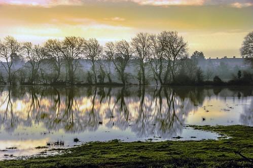 morning winter england mist fog sunrise day somerset bridgwater meads pwwinter