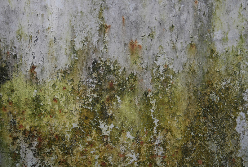 rusty-metal-texture_by_texturepalace-2