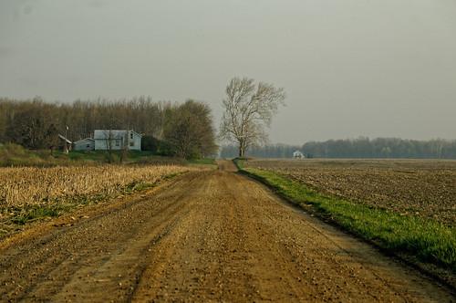 road sky blackandwhite bw house tree monochrome march nikon michigan wheat fields dirtroad 2012 roxana woodlot d300 eatoncounty 1452 nikond300 roxandtownship